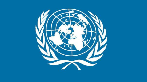 The United Nations office report condemned both sides involved in Ukraine fighting