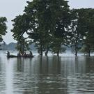 A flood-hit family escapes by boat at Sildubi village in the north eastern Indian state of Assam (AP)