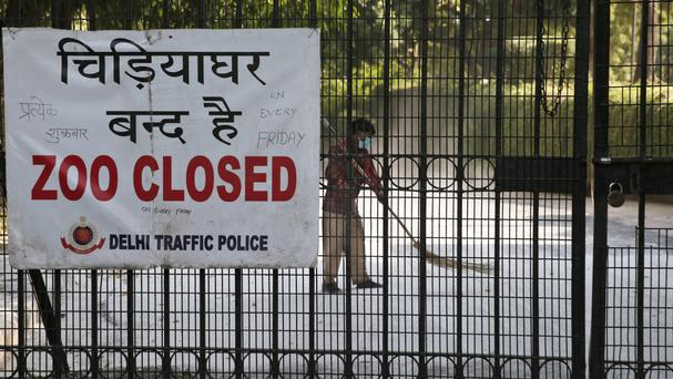 New Delhi zoo closed temporarily after birds die of bird flu