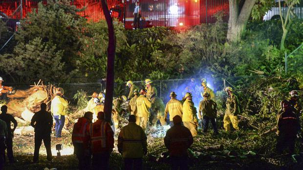 Firefighters use chainsaws to free people trapped under the collapsed eucalyptus tree (The Whittier Daily News/AP)