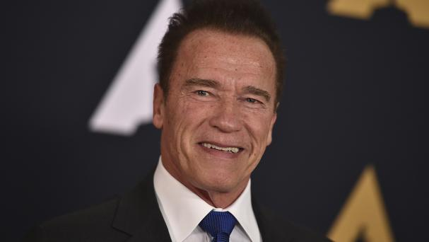 Arnold Schwarzenegger did not support Donald Trump during his presidential run (Invision/AP)