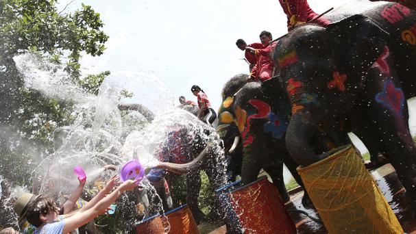 Elephants blow water over tourists (Sakchai Lalit/AP)