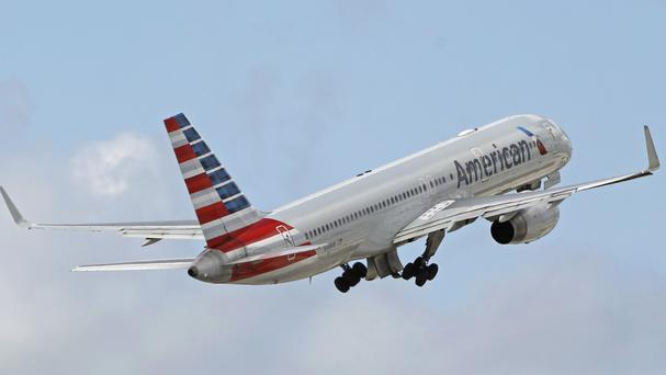 American Airlines has grounded a flight attendant involved in the confrontation (AP)