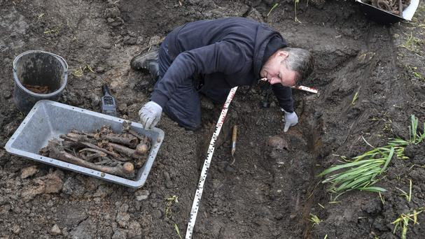 The mass grave in the town of Seelow, Germany (Patrick Pleul/dpa via AP)