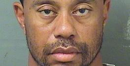 Tiger Woods was booked into a county jail at around 7am local time on Monday (Palm Beach County Sheriff's office via AP)