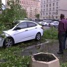 In this grab taken from video, men stand near to a vehicle crushed by branches from a fallen tree in a residential area of Moscow (AP)