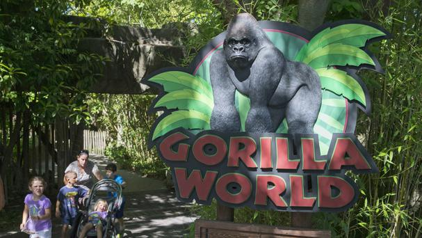 Visitors pass the entrance sign to the Gorilla World exhibit at the Cincinnati Zoo & Botanical Garden. (AP)