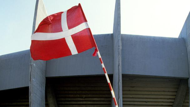 Danish police say a cow which broke loose from a cattle show has injured six people, including four children.
