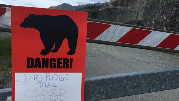 The road is closed after a fatal bear mauling at Bird Ridge Trail in Anchorage, Alaska (AP)