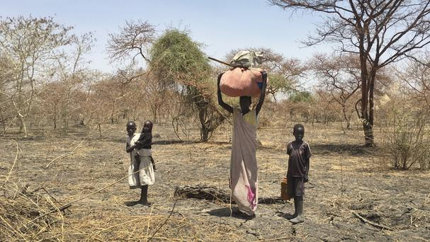 A displaced family walk in search of refuge towards the village of Aburoc, South Sudan (Sam Mednick/AP)