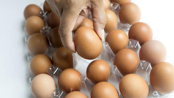 More possibly tainted eggs found in Britain