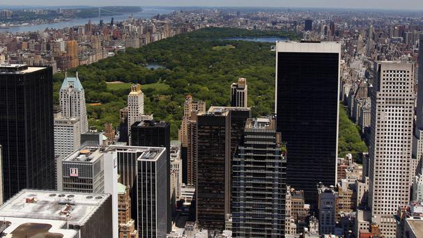 A falling tree injured an adult and three children in New York's Central Park