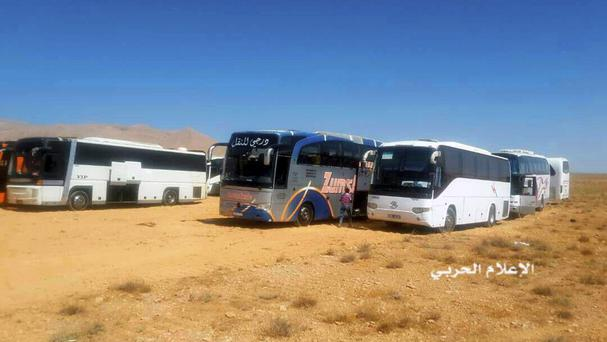 Buses gather for a planned evacuation of Islamic State group militants (Syrian Central Military Media/AP)