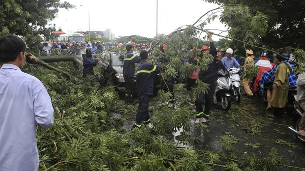 Workers remove fallen trees on a street in the central city of Hue (Vietnam News Agency/AP)