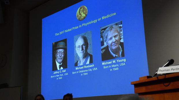 Winners of the 2017 Nobel Prize for Medicine are displayed, from left, Jeffrey C Hall, Michael Rosbash and Michael W Young (AP)