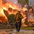 A firefighter in Anaheim Hills, California. Photo: Jeff Gritchen/AP