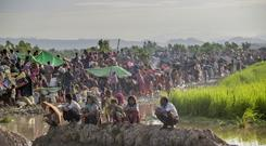 Rohingya Muslims rest on embankments after spending a night in the open in Bangladesh (AP)