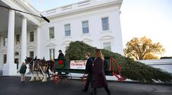 Melania Trump and her son Barron accompany the Christmas Tree to the White House (AP)