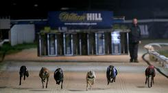 William Hill All England Cup Festival – Newcastle Greyhound Stadium