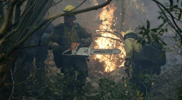 Firefighters from Kern County work to put out hot spots during a wildfire in Montecito, California (AP)
