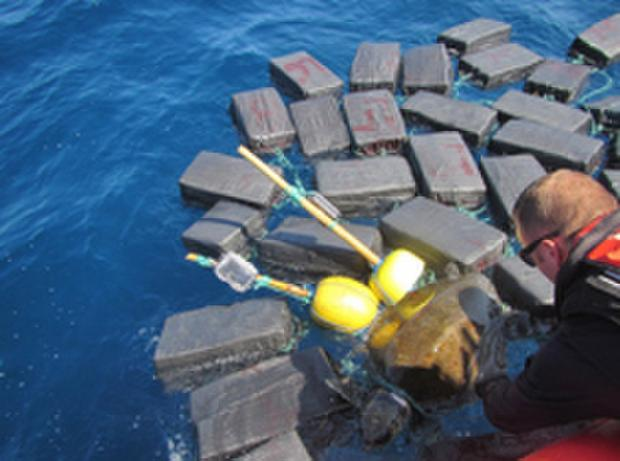 The US Coast Guard helps rescue a sea turtle trapped among bundles of cocaine CREDIT: US COAST GUARD/FACEBOOK