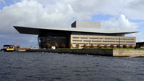 The incident occurred in Copenhagen with the jet ski driver then fleeing to a suburban harbour