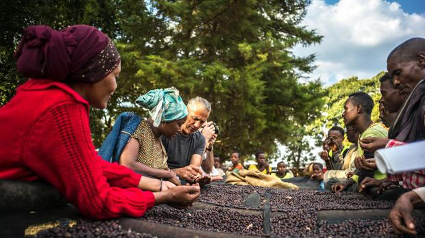 Union Hand-Roasted Coffee conducts direct free trade with producer partners in Rwanda, Ethiopia and Guatemala (Union/PA)