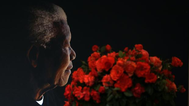 A posy of Mandela roses placed in front of a portrait of Nelson Mandela (Themba Hadebe/AP)