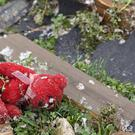 A teddy bear lies among the debris after a fierce storm hit Clarksville, Tennessee (AP)