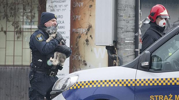 A city guard, left, and a rescuer walk with a little dog saved from the rubble of the apartment bloc (AP)