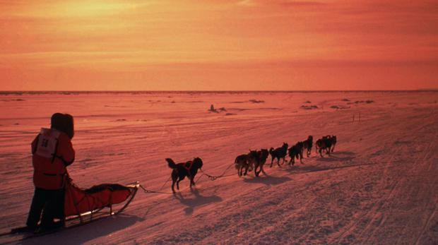 File photo of a musher driving his team across the frozen Norton Sound near Nome, Alaska (Al Grillo/AP)