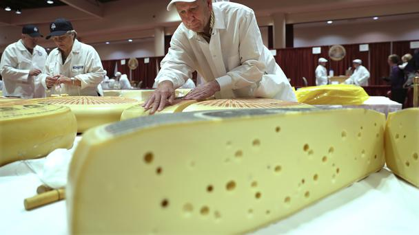 A judge takes a sample during the Rhined Swiss Style Cheese category in Wisconsin (Steve Apps/AP)