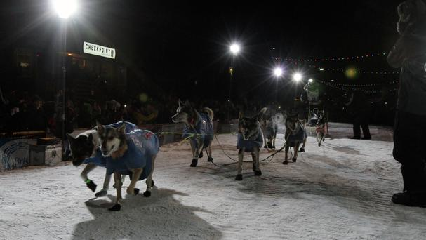 Joar Ulsom of Norway drives his team to the finish line (Diana Haecker/AP)
