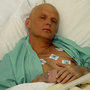 Alexander Litvinenko was killed in 2006. Photo: Reuters