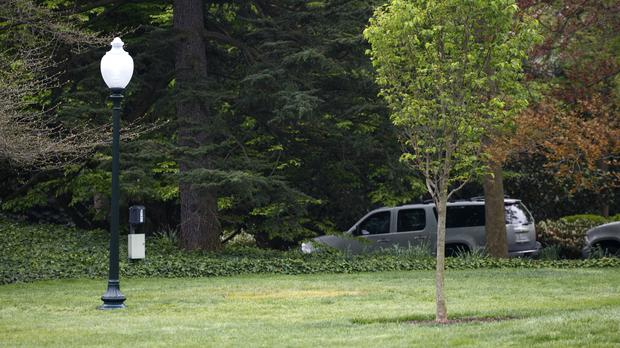 The empty area where a tree was planted by the world leaders on the South Lawn of the White House (Carolyn Kaster/AP)