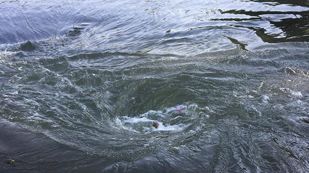 A whirlpool on the Spring River in Arkansas (AP Photo/Arkansas Game and Fish Commission)