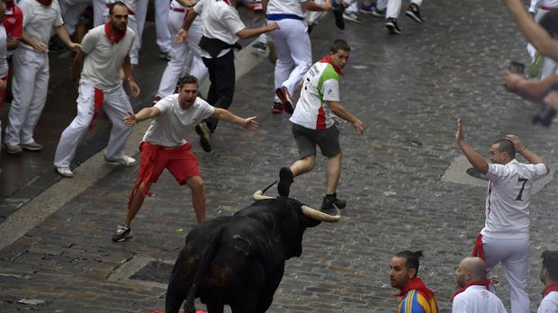 Revellers run next to the fighting bulls (AP Photo/Alvaro Barrientos)