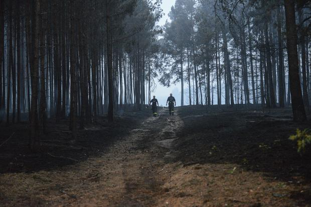 Hundreds evacuated as forest fire sends smoke over Berlin READ MORE