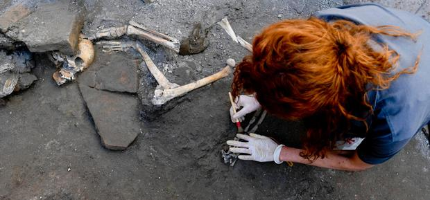 Latest find: An archaeologist inspects one of the five skeletons that were still intact, found at the Pompeii site in Italy. Photo: Ciro Fusco/ANSA via AP