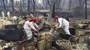 Volunteer rescue workers search in the rubble of burned homes in Paradise, California (AP Photo/Terry Chea)