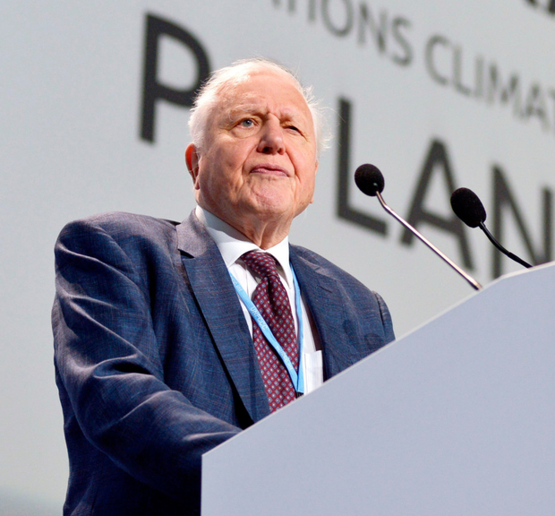 Challenge: Naturalist David Attenborough addresses the climate change conference in Poland. Photo: Lukasz Kalinowski/East News