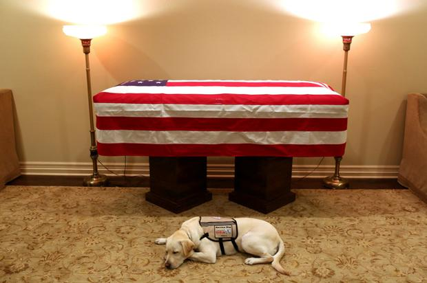 A SPECIAL BOND: President Bush's service dog Sully waits beside his coffin in Washington last week. Photo: Jonathan Ernest