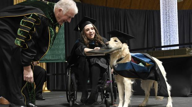 """""""Griffin"""" Hawley, the Golden Retriever service dog, is presented an honorary diploma by Clarkson University President Tony Collins, left, during the Clarkson University """"December Recognition Ceremony"""" in Potsdam, N.Y., Saturday, Dec. 15, 2018. Griffin's owner, Brittany Hawley, in wheelchair, also received a graduate degree in Occupational Therapy. Both attended 100% of their classes together. (AP Photo/Steve Jacobs)"""