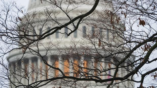 The Capitol is seen amid leafless tree branches in Washington (J. Scott Applewhite/AP)