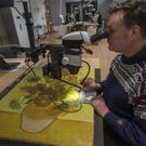 Senior paintings conservator Rene Boitelle works on restoring Vincent van Gogh's Sunflowers painting at the Van Gogh museum in Amsterdam (Peter Dejong/AP)