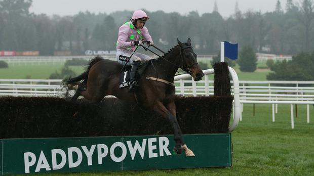 Victor alright: Revenue jumps 17pc at Paddy Power Betfair