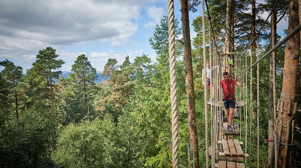 Outdoor adventure business Go Ape has launched a hunt for new investment (Go Ape/PA)