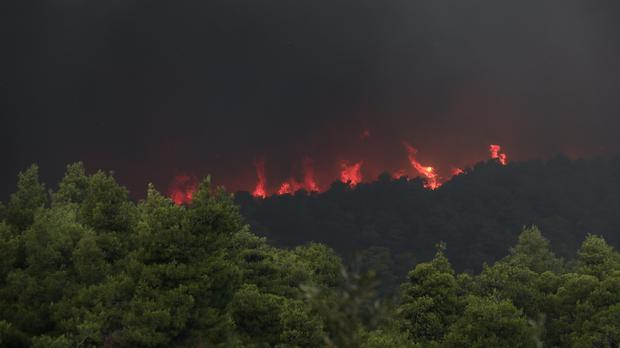 Flames rise from a forest fire near Psachna village on the island of Evia, northeast of Athens (Yorgos Karahalis/AP)