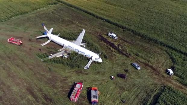 The Ural Airlines A321 plane landed in a field after the bird strike (RU-RTR Russian Television via AP)