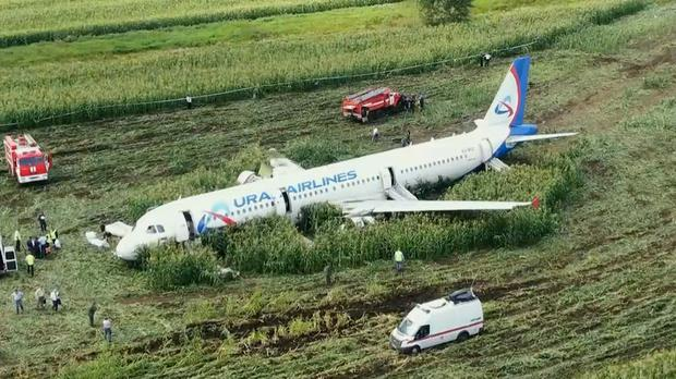 The Ural Airlines' A321 plane landed in a cornfield (RU-RTR Russian Television/AP)